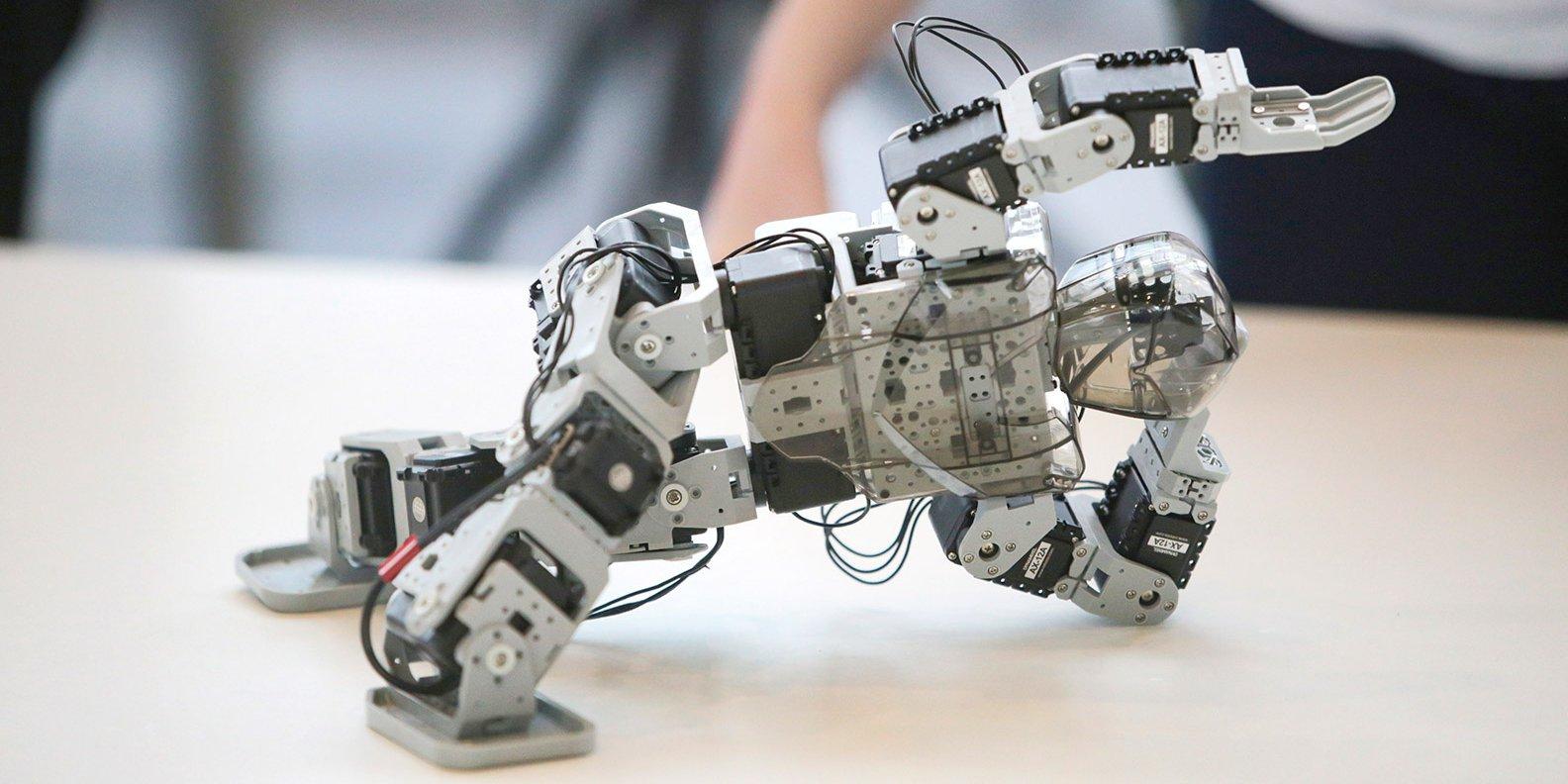 Отборочный этап турнира двух столиц по робототехнике пройдет в Нижегородском районе/mos.ru